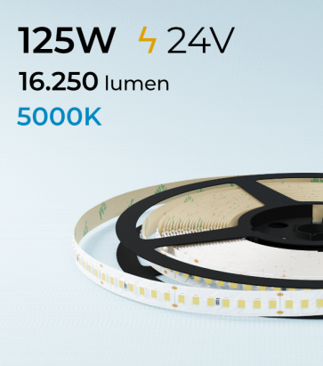 "SUPER OFFERTA FINE SCORTE: Striscia LED 2835 ""PRO"" - 24V - 5 Metri - 125W - SMD2835 168 LED/m - Bianco FREDDO - 5000K"