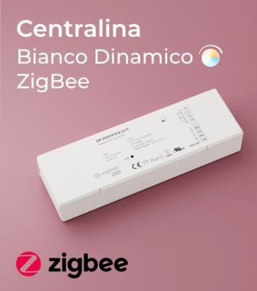 Centralina Ricevente Zigbee 4 Canali x 5A - SNR-ZG9101FA-CCT per strisce LED Bianco Dinamico