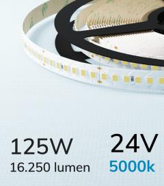 "Striscia LED 2835 ""PRO"" - 24V - 5 Metri - 125W - SMD2835 168 LED/m - Bianco FREDDO - 5000K"