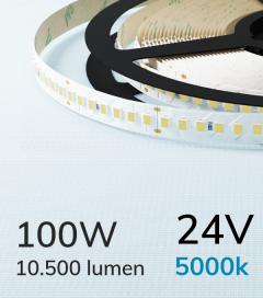 "Striscia LED 2835 ""ECO"" - 24V - 5 Metri - 100W - SMD2835 168 LED/m - Bianco FREDDO - 5000K"