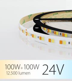 """Striscia LED Bianco Dinamico """"DYNAMIC WHITE"""" - 5 Metri - 100W+100W - 168 LED/m SMD2835 - da 2700K a 5000K"""