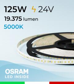 """Striscia LED 2835 """"PRO"""" - 24V - 5 Metri - 125W - SMD2835 Osram - 176 LED/m - Bianco FREDDO - 5000K"""
