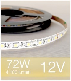 "SUPER OFFERTA: Striscia LED ""ENTRY"" - 5 Metri - 72W - 300 LED SMD5050 BIANCO CALDO"