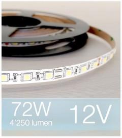 "Striscia LED ""ENTRY"" - 5 Metri - 72W - 300 LED SMD5050 BIANCO FREDDO"
