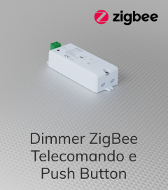 Centralina Ricevente Zigbee 1 Canale x 10A - SNR-ZG9101CS