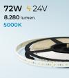 "Striscia LED 2835 ""ECO"" - 24V - 5 Metri - 72W -  140 LED/m SMD2835 - Bianco FREDDO 5000K"