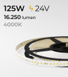 """SUPER OFFERTA FINE SCORTE : Striscia LED 2835 """"PRO"""" - 24V - 5 Metri - 125W - SMD2835 168 LED/m - Bianco NATURALE - 4000K"""
