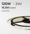"SUPER OFFERTA: Striscia LED 2835 ""PRO"" - 5 Metri - 125W - SMD2835 BIANCO NATURALE 120 LED/m"